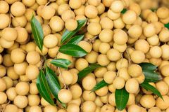 Longan background Royalty Free Stock Photos