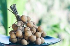 Longan dimocarpus longan Плодоовощи плодоовощ longan ветви все и в отрезке Стоковая Фотография