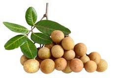 Longan Dimocarpus Royalty-vrije Stock Afbeeldingen