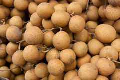 Longan. Or Dimocarpus , The tropic fruit stock images