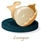 Longan, Dimocarpus longan.  Vector illustration of longan berry on the plate.  royalty free illustration