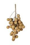Longan dourado Imagem de Stock Royalty Free