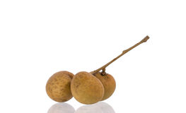 Longan. Fresh  on the background stock images