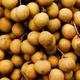 Longan is so fresh Royalty Free Stock Photography