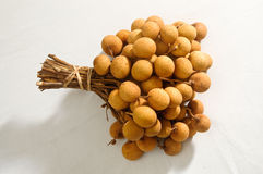 Longan fruit Stock Images