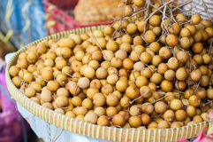 Longan fruit in abundance. Longan fruit from farmers to be marketed Royalty Free Stock Photos