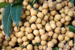 Longan. The longan is a fruit that is in Asia Stock Images
