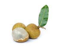 Longan  fruit . Stock Images