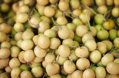 Longan fruit on the counter of the Asian market Stock Images
