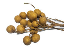 Longan fruit isolated Stock Image
