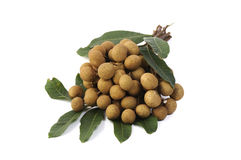 Longan fruit isolated on white background Royalty Free Stock Photo