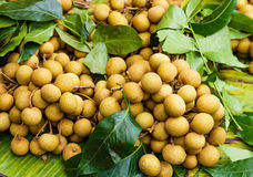 Longan in fruit market Royalty Free Stock Images