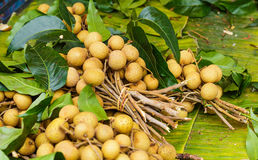Longan in fruit market Royalty Free Stock Image