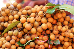 Longan fruit in the market Royalty Free Stock Photography