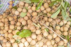 Longan fruit Stock Photography