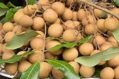 Longan fruit Royalty Free Stock Images