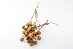 Longan fruit from Thailand Stock Images