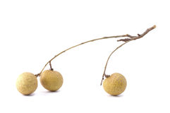 Longan fruit on white background Stock Photo