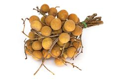 Longan Fruit On White Royalty Free Stock Image