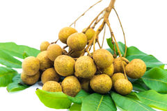 Longan fruits Stock Photography