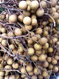 Longan fruits. Longan - the sweet fruits Stock Photo