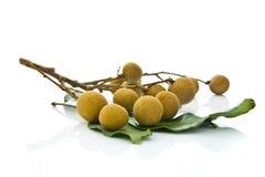 longan frukt arkivfoton