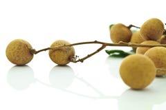 longan frukt arkivbild