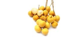 Longan frukt royaltyfri fotografi