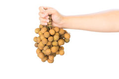 Longan in hand Royalty Free Stock Photography