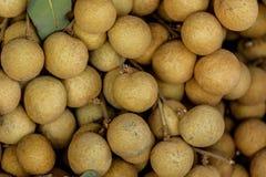 longan owoc od rolników wprowadzać na rynek Obraz Stock