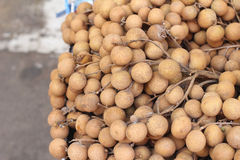 Longan owoc w rynku Fotografia Royalty Free
