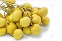 Longan Thai fruit Royalty Free Stock Photo