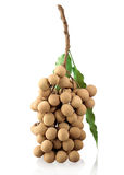 Longan Thai tropical fruit Stock Image