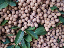 Longan. The tropical fruit that has sweet flavored flesh and yields high calorific value and minerals stock photo