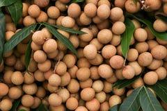 Longan, tropische Frucht stockfotografie