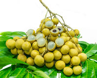 Longan on white background with leaf. Fresh longan on white background Stock Image