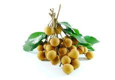 Longan on a white background stock photography