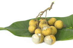 Longanfrucht auf grünem Blatt. Stockfoto