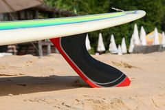 Surfboard with carbon Fin on the beach royalty free stock image