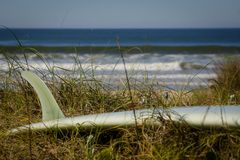 Longboard na frente do oceano imagens de stock royalty free