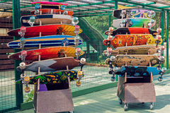 Longboards e skates para o aluguel Fotos de Stock Royalty Free