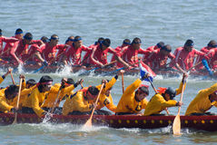 Longboat que compete em Pattaya, Tailândia Fotografia de Stock