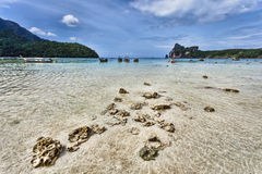Longboats on Phi Phi Island Stock Images