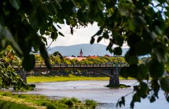 Longest european linden alley in Uzhgorod. Longest linden alley in europe. Summer landscape behind the branches on the river embankment in Uzhgorod, Ukraine Royalty Free Stock Photo
