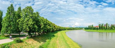 Longest linden alley in europe. Wonderful urban scenery near the river. pupular travel destination in uzhgorod, ukraine. panorama of trees in blossom on the royalty free stock image