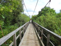 Hanging footbridge, Lithuania Royalty Free Stock Images
