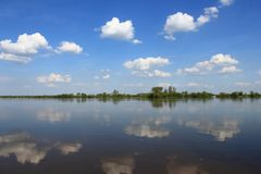Longest river in Poland, Vistula Stock Images
