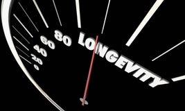 Longevity Lasting Life Span Word Speedometer. 3d Illustration Stock Image