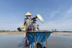 Longhai Vietnam Stock Photography