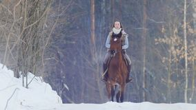 Longhaired female rider wild and fast riding black horse through the snow stock images